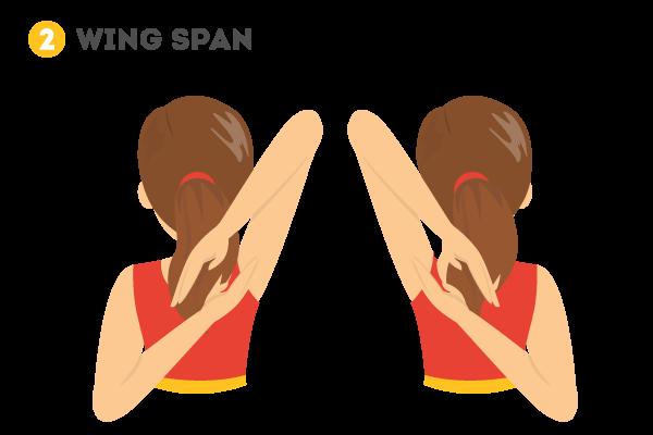 wing_span